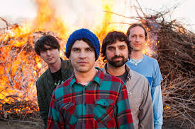 Book Animal Collective