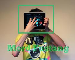 Book Mord Fustang